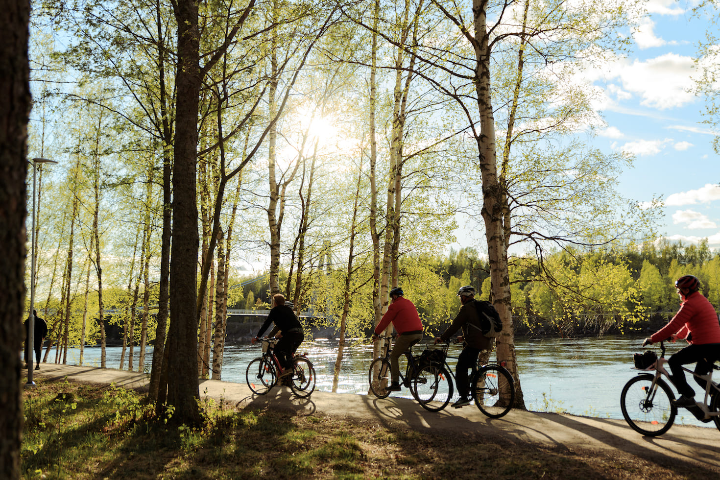 Guided Bike Tour/Guidad cykeltur Umeå